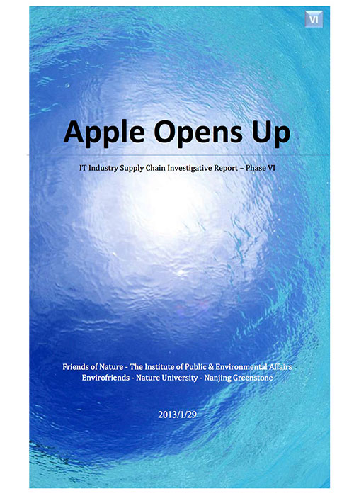 2-resource-g_-it-study-report-vi-apple-opens-up-ipe-january-2013