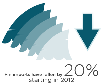 ADMCF_MARINE_IMPACT_Fin Imports Fallen_PNG_346x283