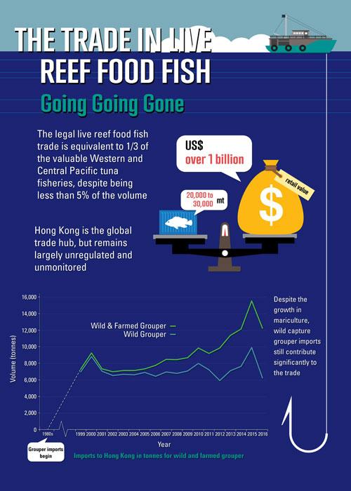 Image_LRFFT_Infographic_1
